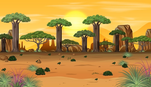 Afrykański krajobraz leśny