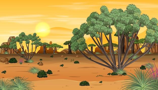 Afrykański las na zewnątrz krajobraz