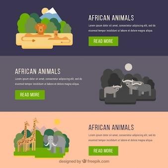 Afrykańskie zwierzęta banery w płaskiej konstrukcji