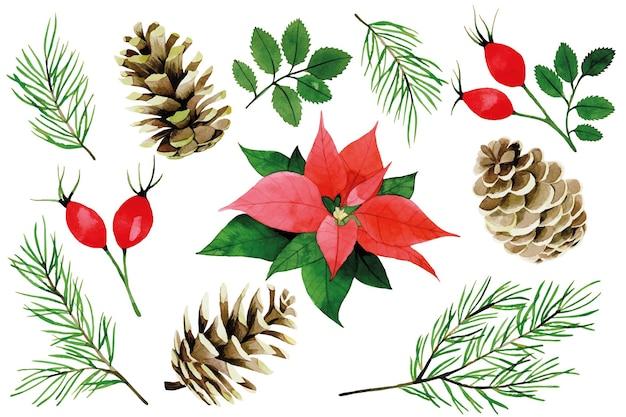 Akwarela boże narodzenie zima zestaw poinsecja czerwone jagody i liście dzikiej róży gałęzie jodły