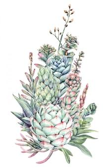 Akwarela bukiet kaktusów i sukulentów. soczysta farba.