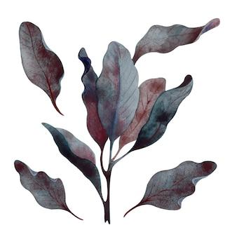 Akwarela ciemnoniebieskie jesienne liście