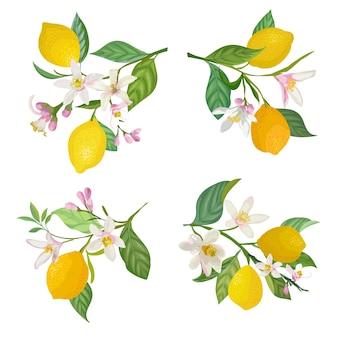 Akwarela cytryny wiszące na gałęzi z liśćmi i kwiatami na plakaty, letnie żywe banery, szablony projektów okładek, historie w mediach społecznościowych, wiosenne tapety. ilustracja wektorowa