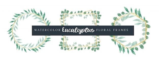 Akwarela eukaliptusowe ramki kwiatowe