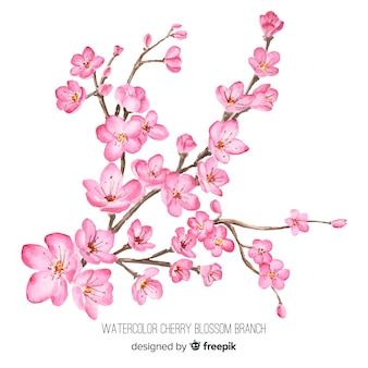 Akwarela gałąź kwiat wiśni