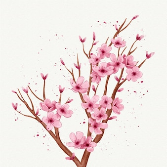 Akwarela gałąź kwiatu sakury