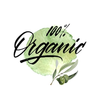 Akwarela gałązką oliwną. szkic gałązką oliwną na białym tle. organiczny napis