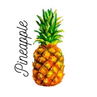 Akwarela ilustracja ananasa. . brak przejrzystości. gradienty.