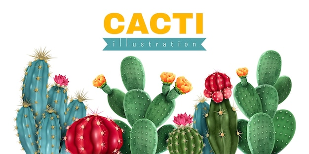 Akwarela ilustracja kaktusy