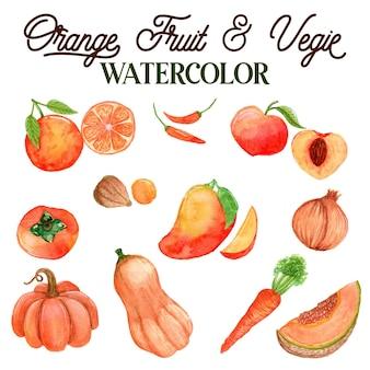 Akwarela ilustracja pomarańczowe owoce i warzywa