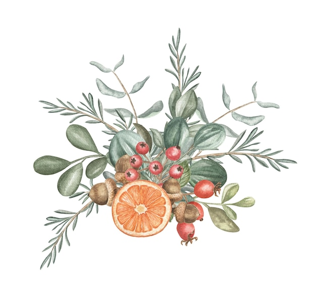 Akwarela ilustracja roślin zimowych i jagód. święta bożego narodzenia i zimowe.