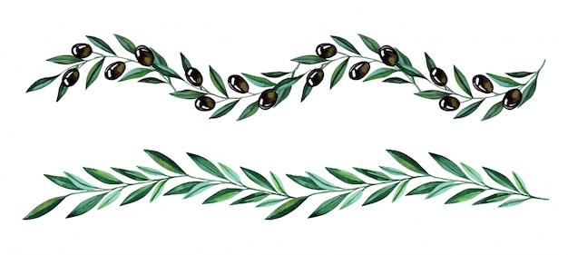Akwarela ilustracja z gałązkami oliwnymi i granicami jagody. kwiatowa ilustracja na ślub stacjonarne, pozdrowienia, tapety, modę i zaproszenia.