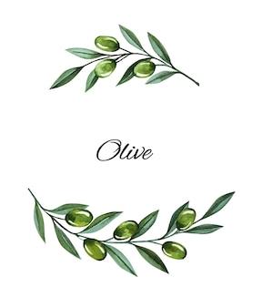 Akwarela ilustracja z gałązkami oliwnymi i ramą jagody. kwiatowa ilustracja na ślub stacjonarny, życzenia, tapety, moda i zaproszenia.