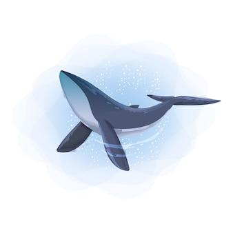 Akwarela ilustracja zwierząt płetwal błękitny