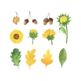 Akwarela jesień zestaw z liści, grzybów, kwiatów na białym tle.