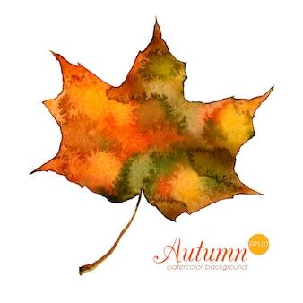 Akwarela jesienny liść. piękny wektor ręcznie rysowane tekstury