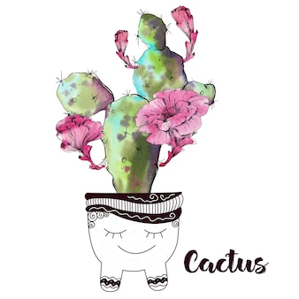 Akwarela kaktus na białym tle