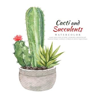 Akwarela kaktusy i sukulenty w doniczce.