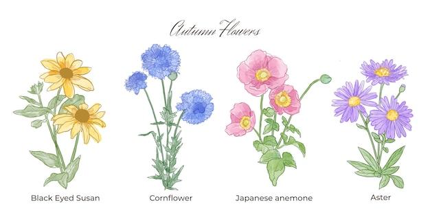 Akwarela kolekcja jesiennych kwiatów