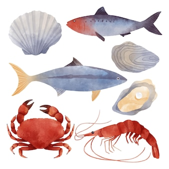 Akwarela kolekcja stworzeń oceanicznych