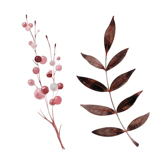 Akwarela kolorowe liście