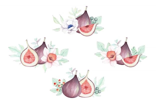 Akwarela kompozycja kwiatowa i figi.