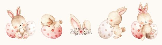 Akwarela króliki wielkanocne z jajkami