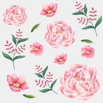 Akwarela kwiat wektor rysunek kolekcja clipart