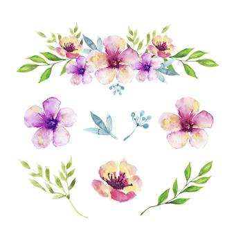Akwarela kwiatowy i zestaw ozdób liści