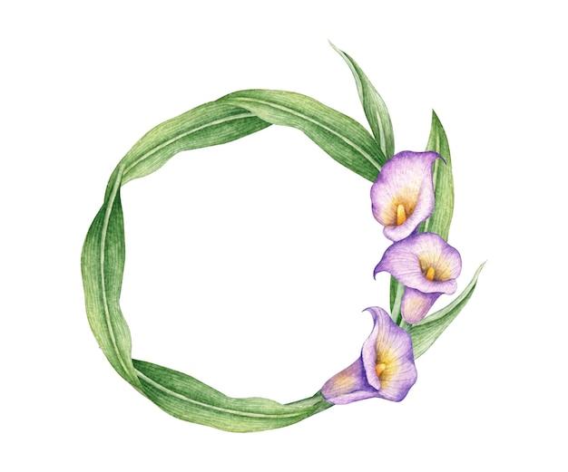 Akwarela kwiatowy rama z lilii calla
