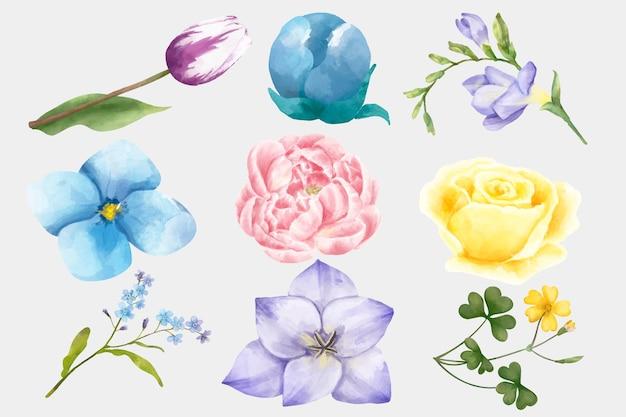 Akwarela kwitnące kwiaty wektor zestaw clipart