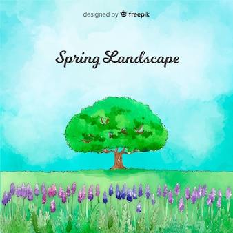 Akwarela lawendowego pola wiosny tło