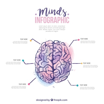 Akwarela ludzki mózg infografika