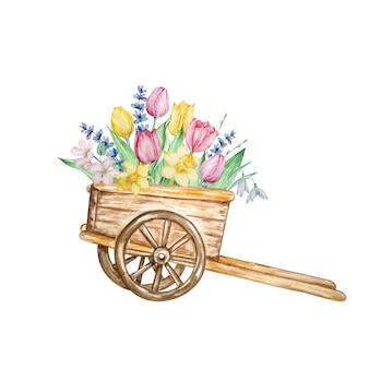 Akwarela malarstwo wiosenne kwiaty, drewniany wózek z tulipanami, żonkilami i przebiśniegami.