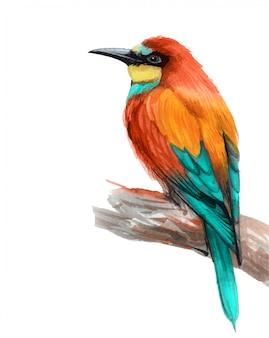 Akwarelą malowany piękny ptak na białym tle