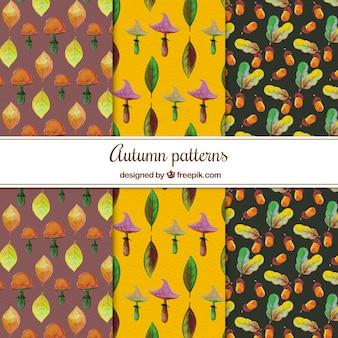 Akwarela pack jesieni wzorów