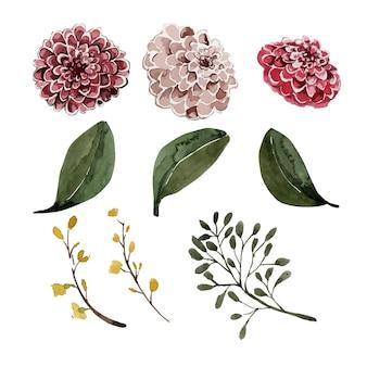Akwarela piękne pąki kwiatowe i liście