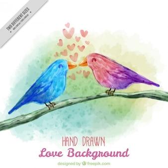 Akwarela piękne ptaki na tle kończyn