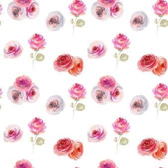 Akwarela przetargu różowe i białe róże bez szwu wzór