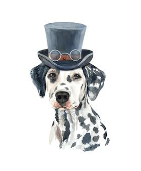 Akwarela psa dalmacji z kostiumem.