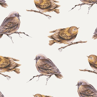 Akwarela ptak na gałęzi tapety ptaki wzór