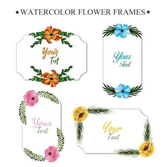Akwarela ramki kwiatu