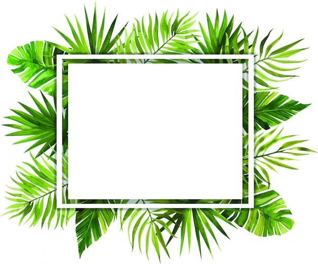 Akwarela ramki z tropikalnych liści