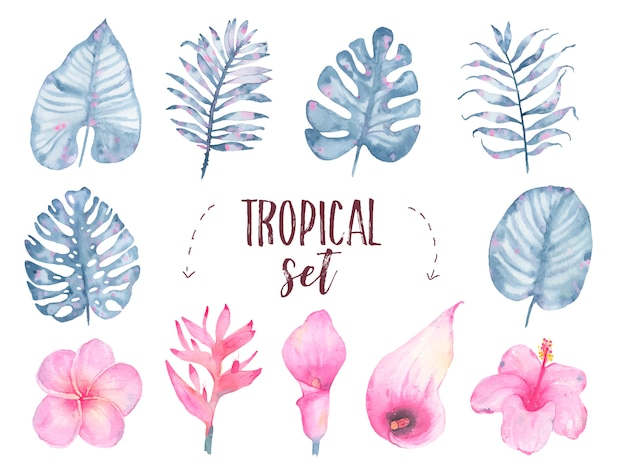 Akwarela ręcznie malowane tropikalny liść indygo kwiat frangipani hibiskusa calla lily zestaw na białym tle