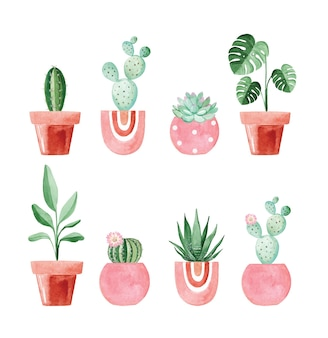 Akwarela rośliny doniczkowe w różowych doniczkach zestaw na białym tle. kaktusy i sukulenty ilustracje w ogrodzie wewnętrznym