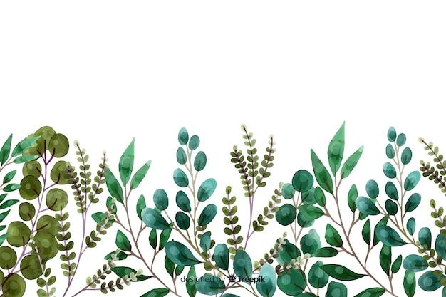 Akwarela rośliny i liście ramki