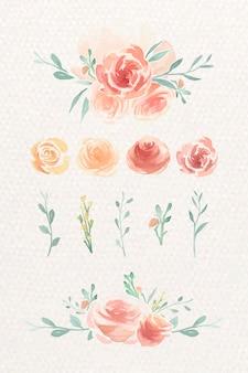 Akwarela róża zestaw