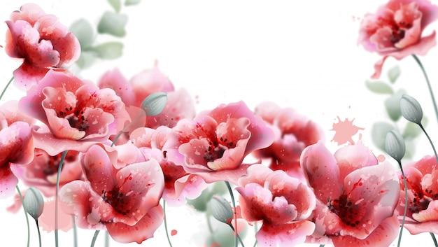 Akwarela różowe kwiaty maku