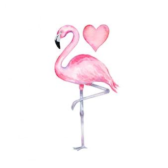 Akwarela różowy flaming stojący na jednej nodze z sercem