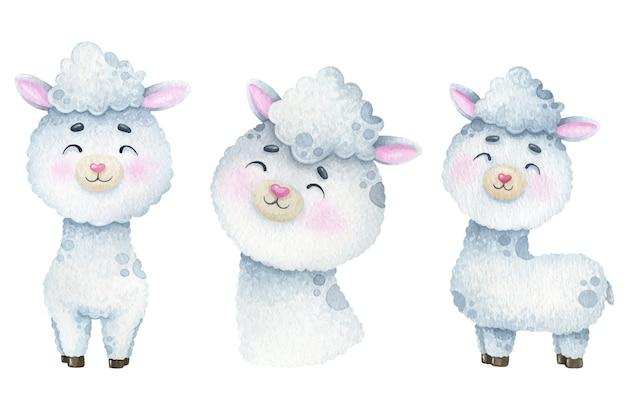 Akwarela słodkie białe lamy